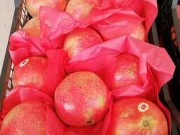 Pomegranates - photo 2