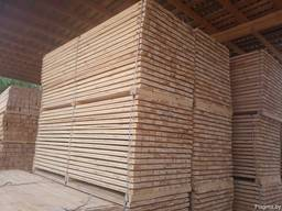 Sawn timber of pine