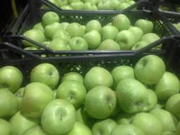 Яблоко - фото 3